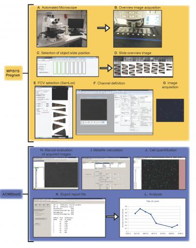 Carl Zeiss AxioCam MRc5 Publisher s Description
