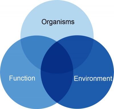 Our integrative approach to Ecosystems Biology