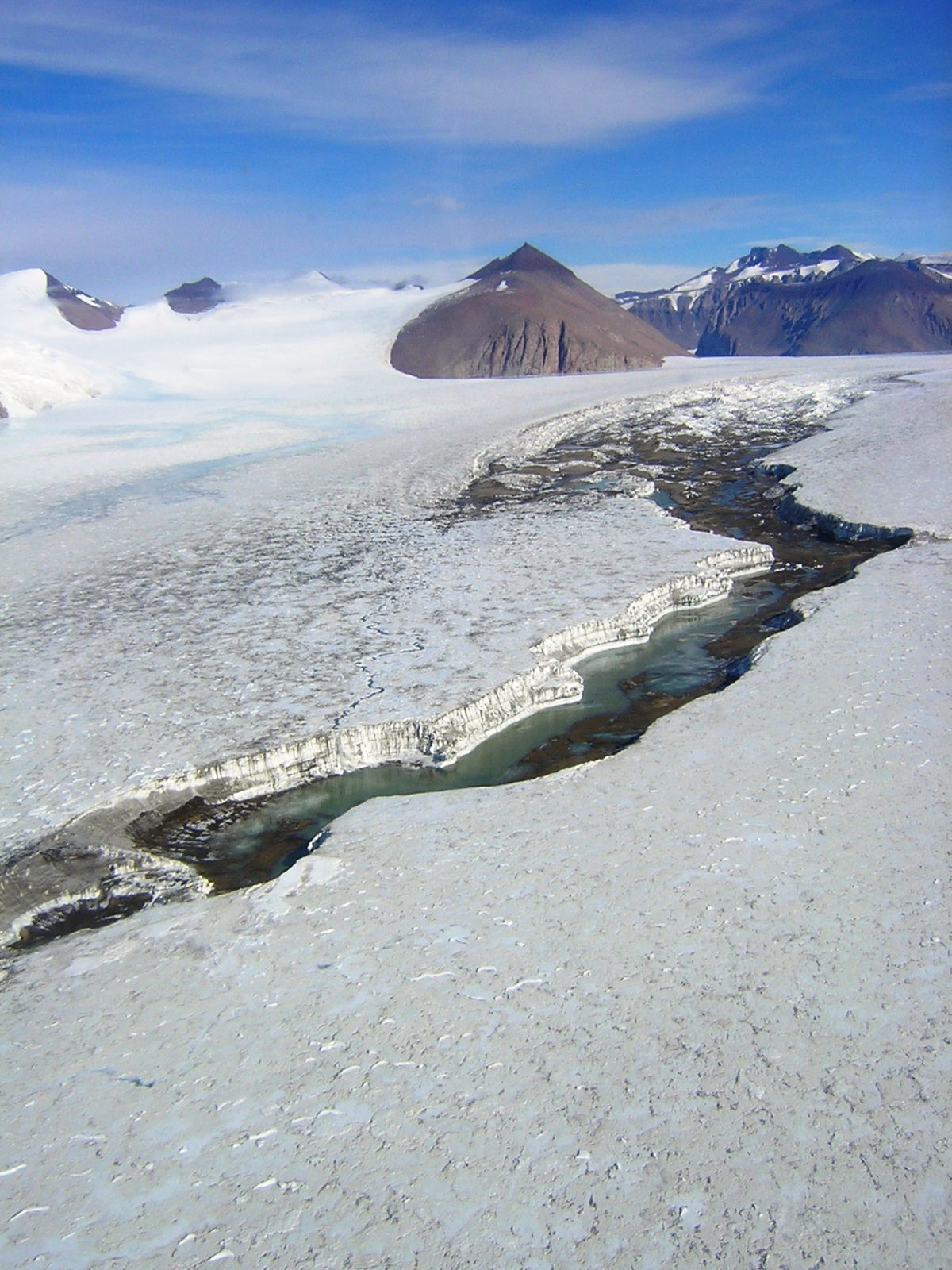 Cotton Glacier Stream (C. Foreman)