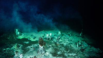 A wide view of a field with a number of areas of diffuse flow, some noted by several small (<1m tall) chimneys. Picture: ROV SuBastian / SOI