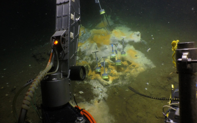 Diving in the Gulf of California: With the submersible ALVIN, the researchers from Bremen were able to reach the seafloor. There they used ALVIN's grab arm to collect sediment cores from the seabed. White-orange coloured microbial mats made of sulfur-oxidizing bacteria indicate hot vents, where particularly large amounts of methane and other energy-rich compounds are released. (© Woods Hole Oceanographic Institution)