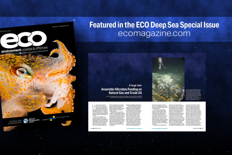 ECO Magazin: A tough diet for deep sea microbes